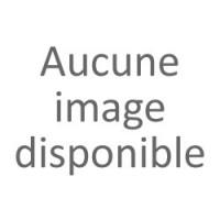LAMES DE SCIE PRIOR OU GOLD SHARK